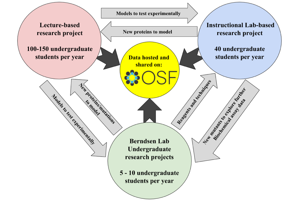 OSF as a tool for managing course-embedded research projects